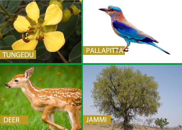 list of telangana state symbols   animal flower tree bird